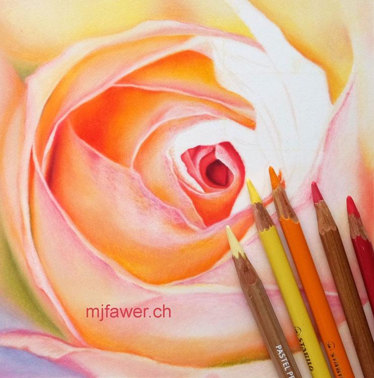 Rose arc-en-ciel au pastel sec - dessin en cours