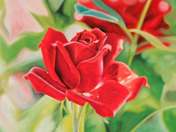 Rose rouge au pastel sec