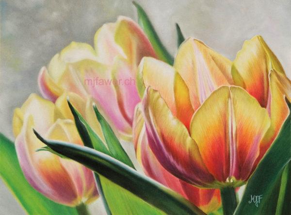 Tulipes au pastel sec