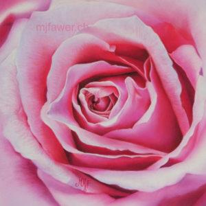 Rose rose au pastel sec
