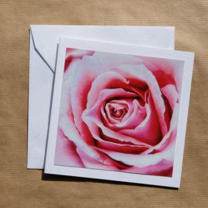 Carte carrée Rose rose au pastel sec avec enveloppe