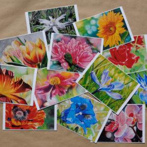 Cartes collection Fleurs 1