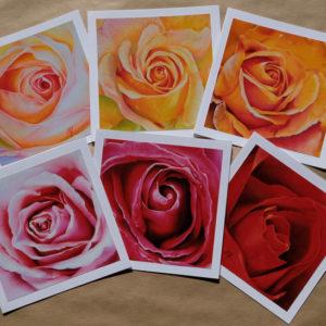 Cartes rose arc-en-ciel