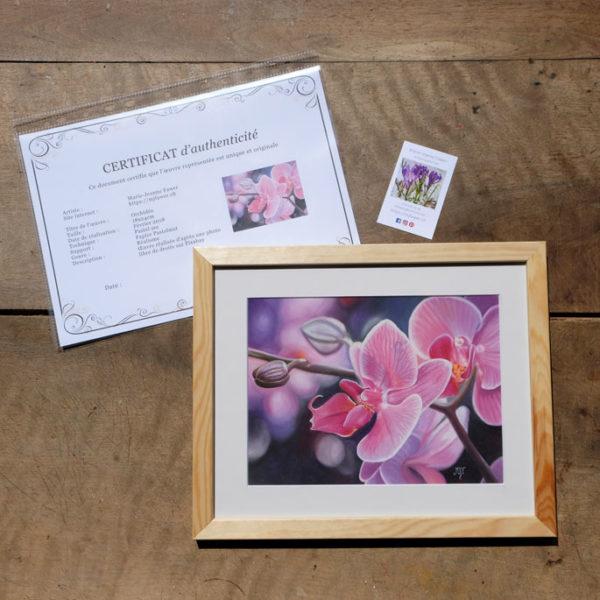 Tableau original Orchidée au pastel sec avec son certificat d'authenticité