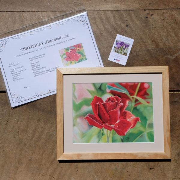 Tableau original Rose rouge au pastel sec avec son certificat d'authenticité