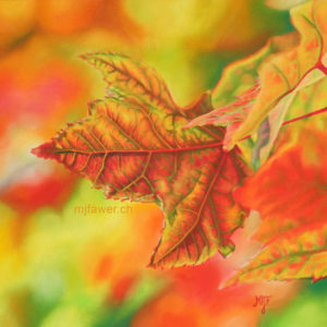 Feuille d'automne, pastel sec
